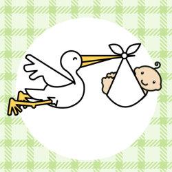 West Roxbury Smiles - Infant Oral Care